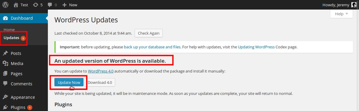 update-WP-installation-4